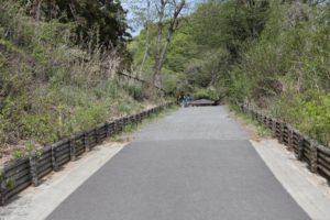 あつぎこどもの森公園の入り口近くの坂道