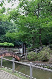野山北公園の釣り堀ができる池