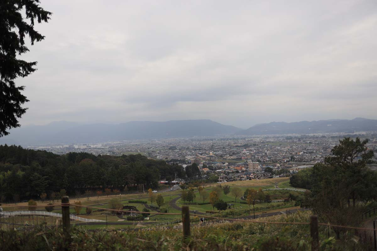 公園からの見える街並みの景色