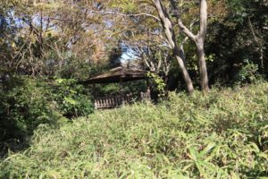 上郷森の家の自然観察の森の散歩道にある休憩所