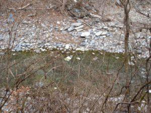 神庭オートキャンプ場の川遊びできる川