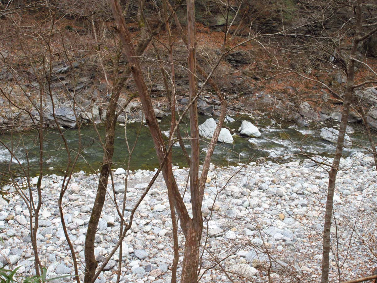 キャンプ場から見える川
