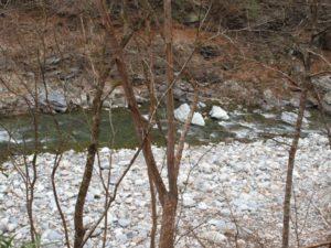 神庭オートキャンプ場で川遊びができる荒川