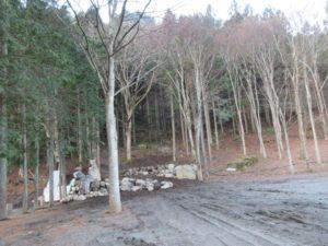 神庭オートキャンプ場のフリーサイト予定地