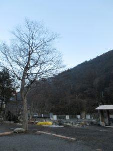 神庭オートキャンプ場の区画サイト