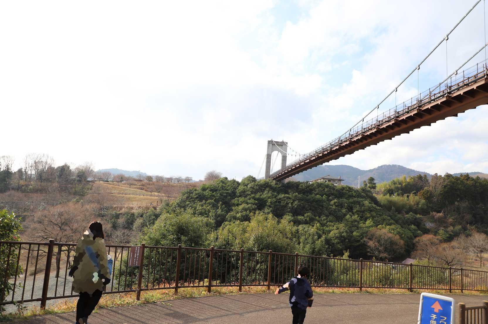 県立秦野戸川公園の吊り橋