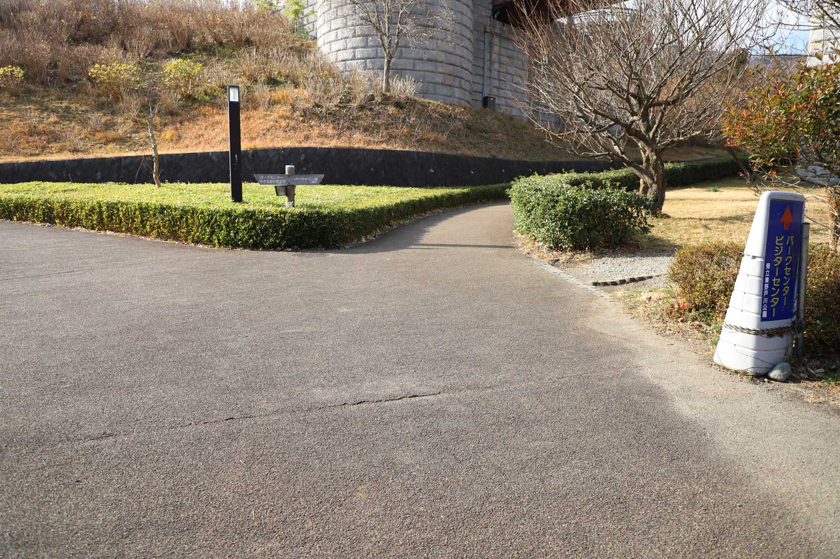 県立秦野戸川公園の散歩道