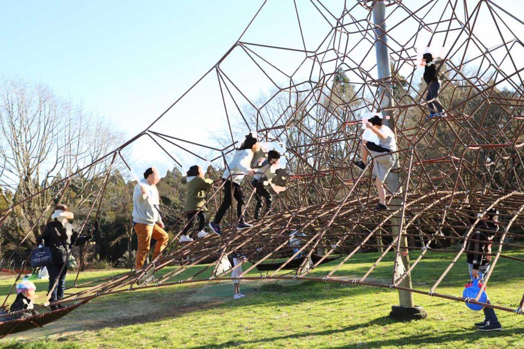 昭和の森公園のアスレチック