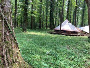レイクロッジヤマナカのキャンプサイト