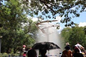 千葉県立青葉の森公園の水の広場