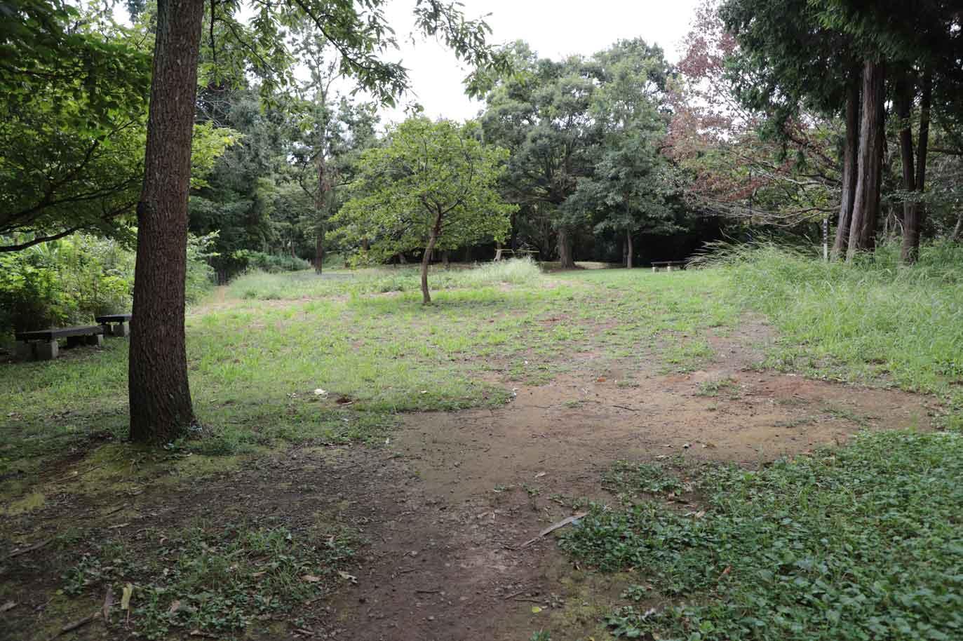 鎌倉中央公園の広場