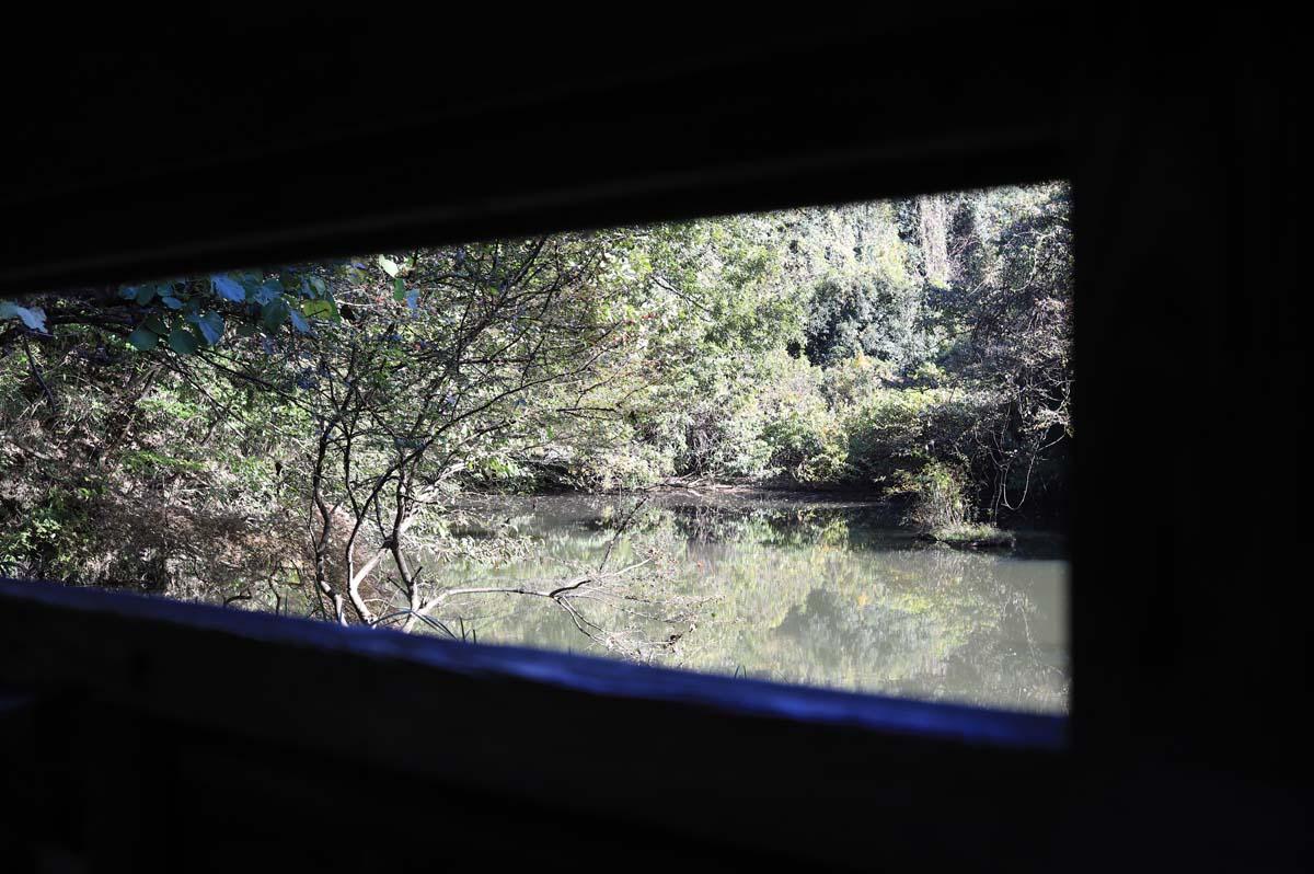 写真撮影場所から見える池