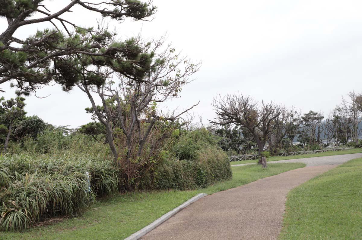 広い遊歩道
