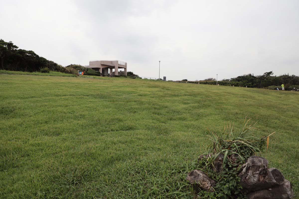 海の近くにある芝生広場