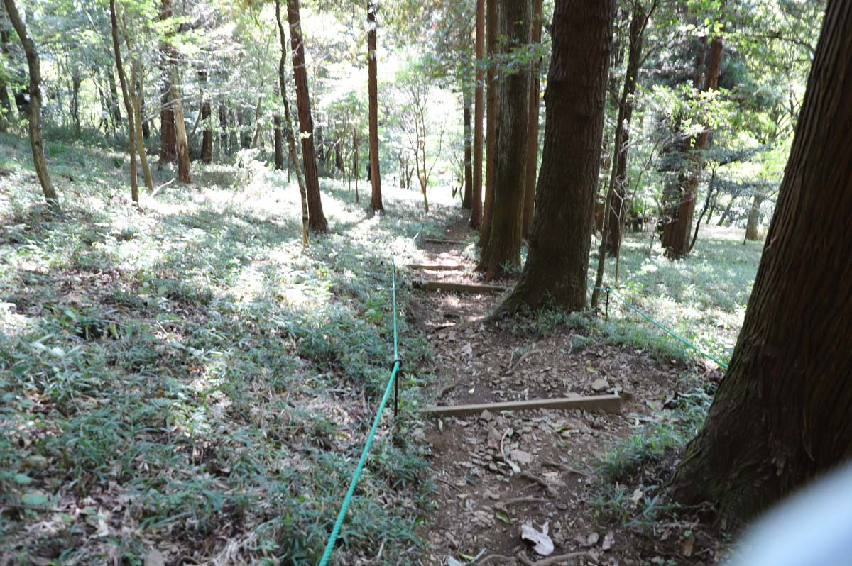 山の中の遊歩道の坂道