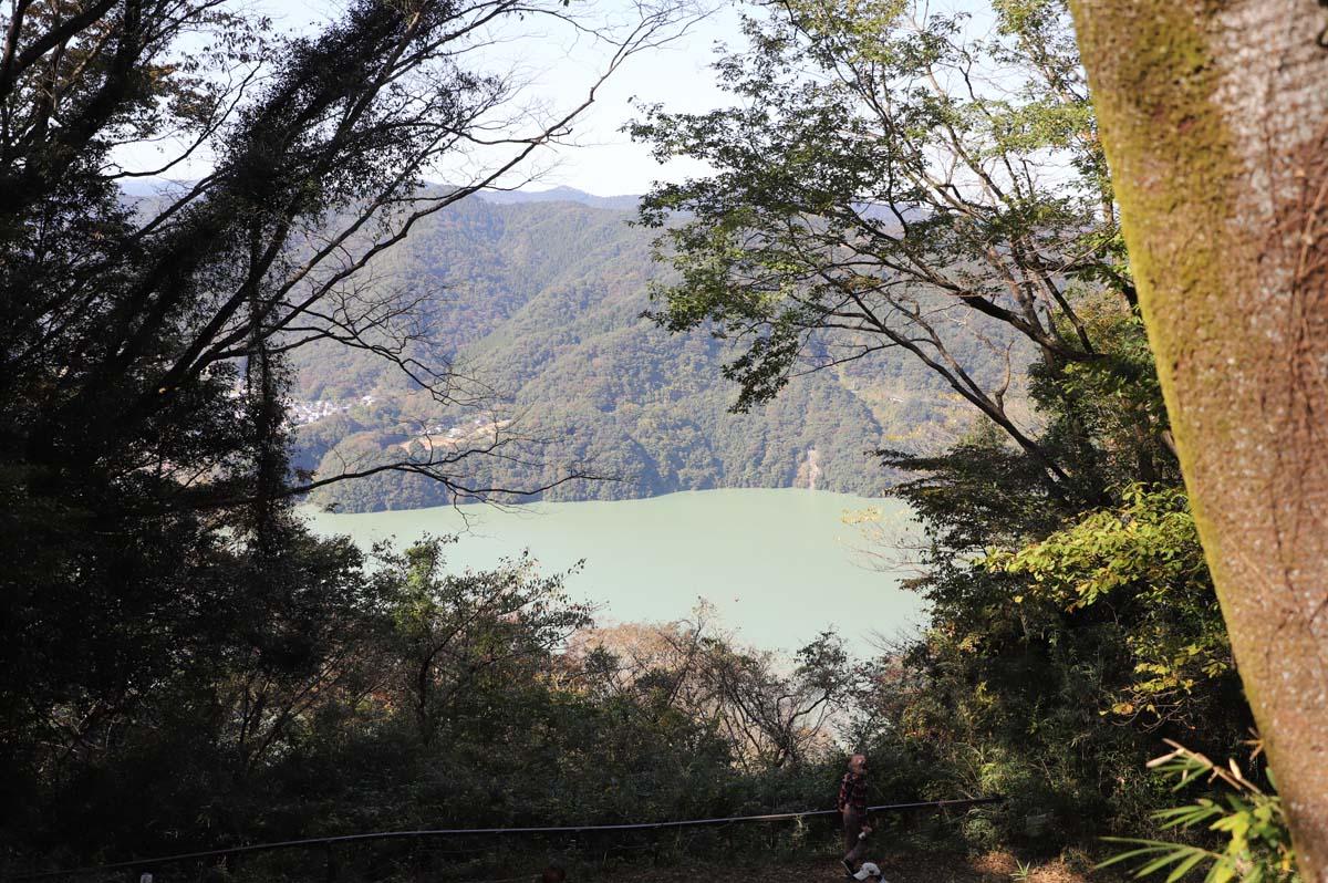 遊歩道から見えるダム