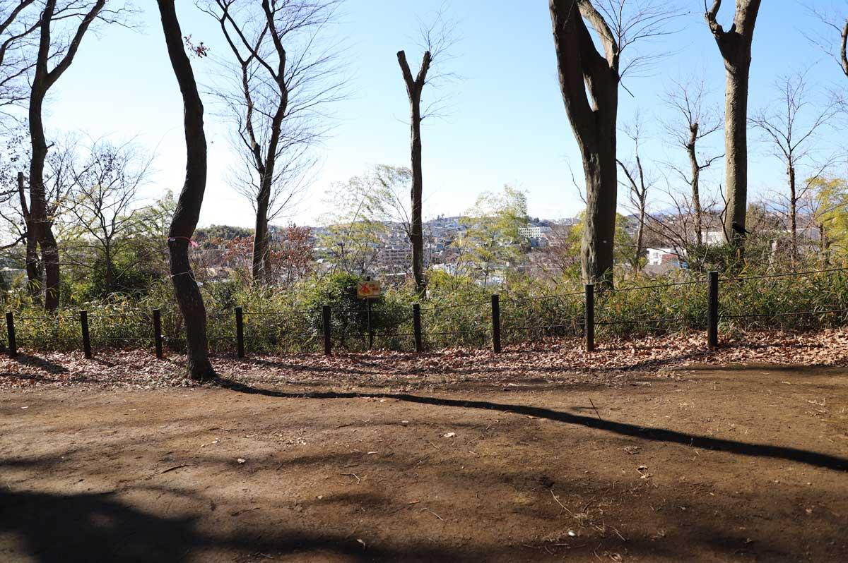 川崎市街の眺望